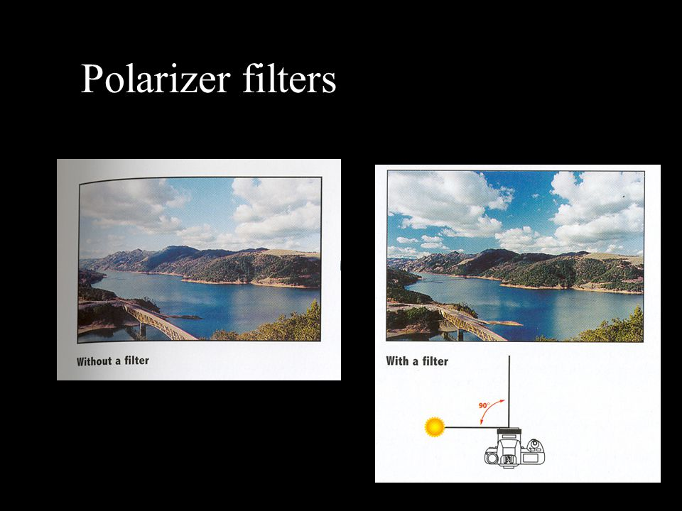 Polarizer filters