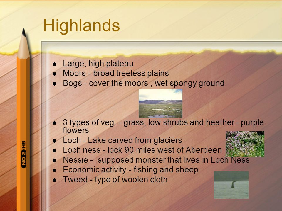 Highlands Large, high plateau Moors - broad treeless plains Bogs - cover the moors, wet spongy ground 3 types of veg.