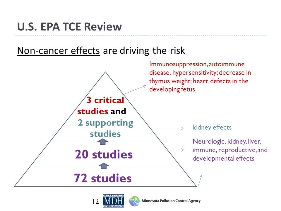 U.S. EPA TCE Review Non-cancer effects are driving the risk 12 72 studies 3 critical studies and 2 supporting studies 20 studies Immunosuppression, au