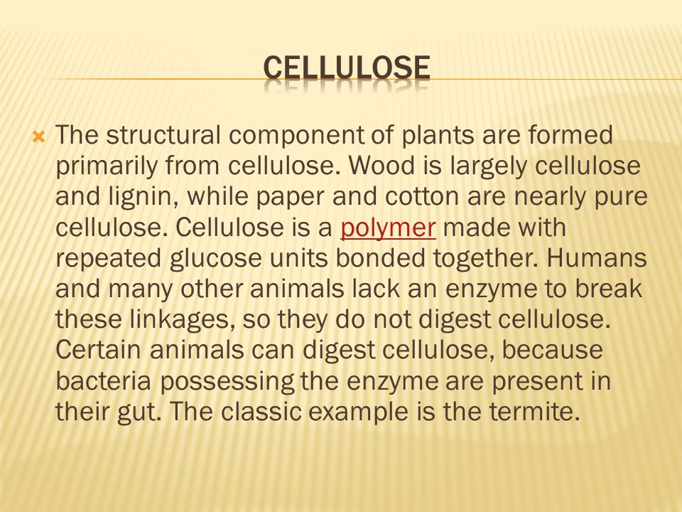  The structural component of plants are formed primarily from cellulose.