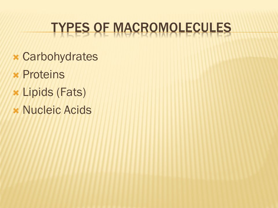  Carbohydrates  Proteins  Lipids (Fats)  Nucleic Acids