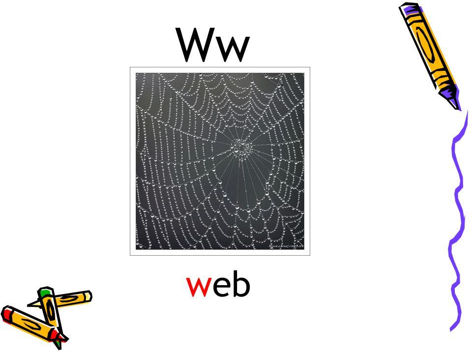 Ww web