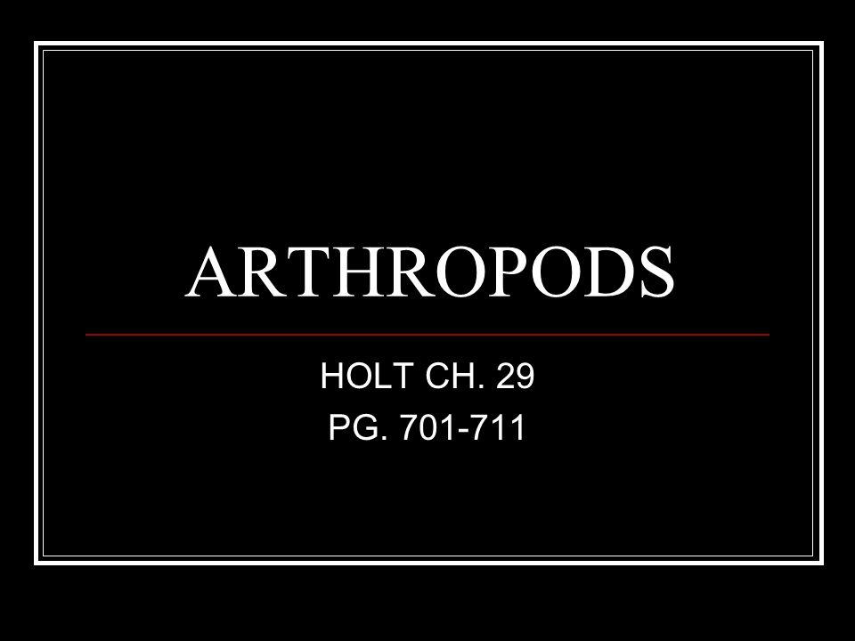 ARTHROPOD CHARACTERISTICS Segmented body