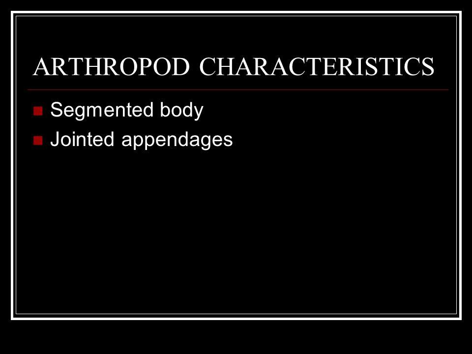ARTHROPOD CHARACTERISTICS Segmented body Jointed appendages Hard external skeleton