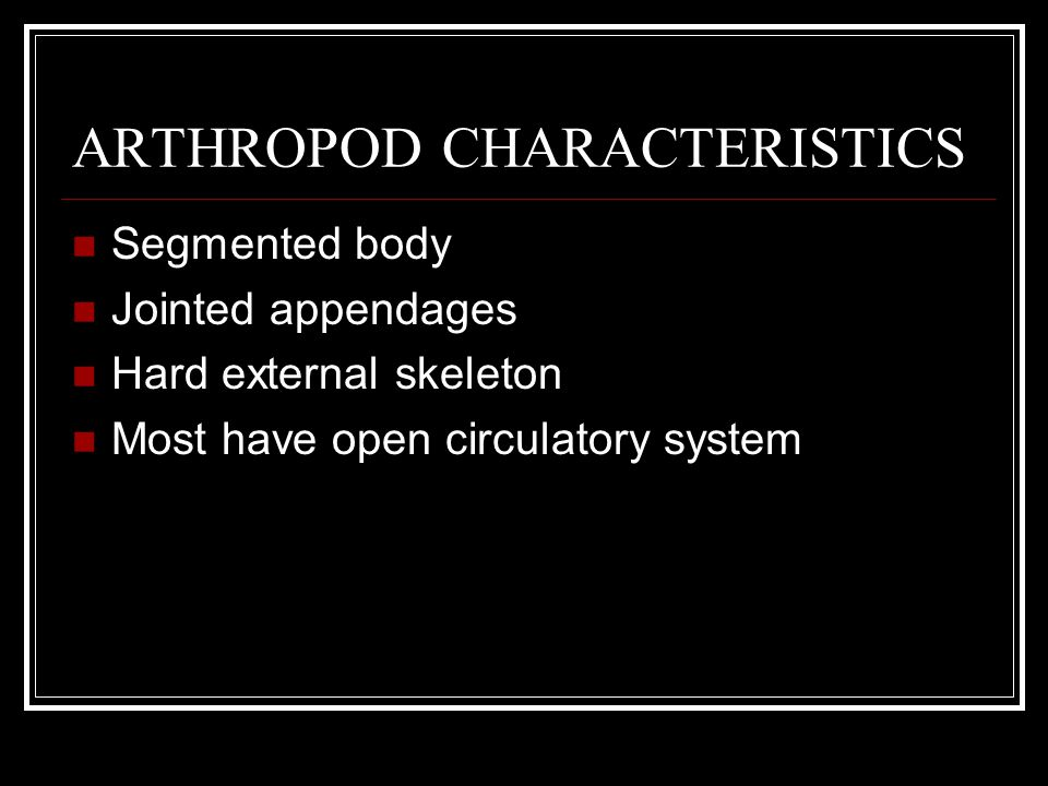 ARTHROPOD CHARACTERISTICS Segmented body Jointed appendages Hard external skeleton Most have open circulatory system Many have wings