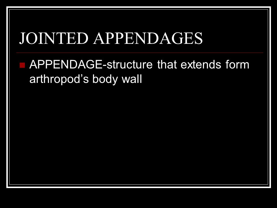 JOINTED APPENDAGES APPENDAGE-structure that extends form arthropod's body wall ARTHROPOD= jointed foot