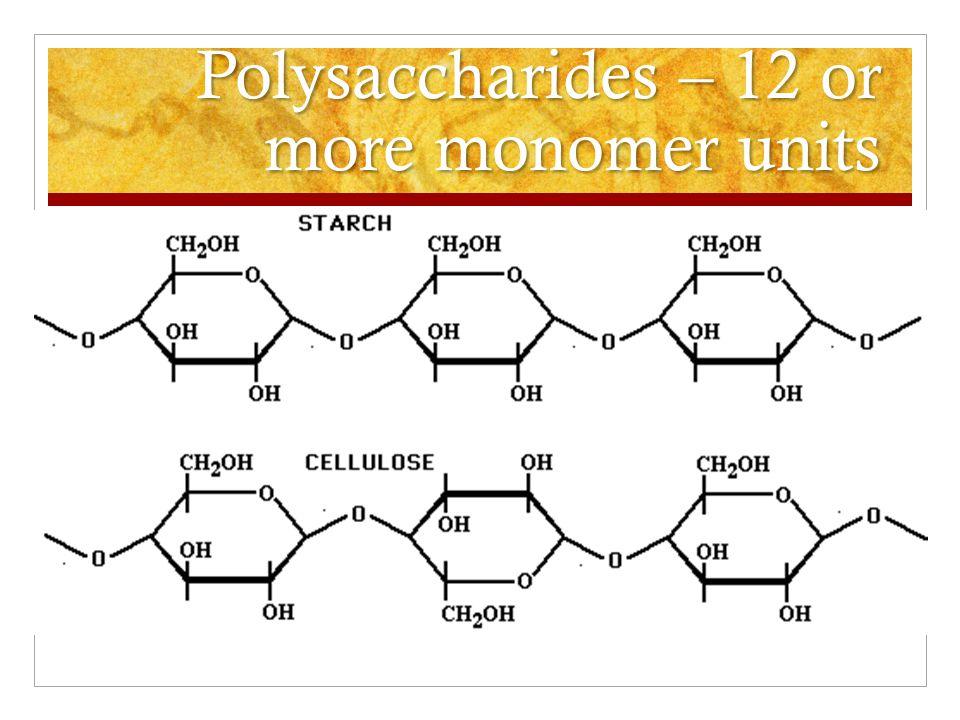 Polysaccharides – 12 or more monomer units Polysaccharides – 12 or more monomer units