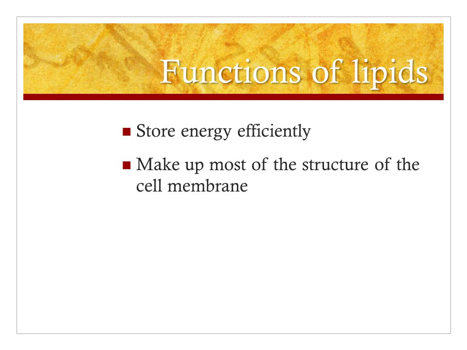 Functions of lipids Store energy efficiently Make up most of the structure of the cell membrane