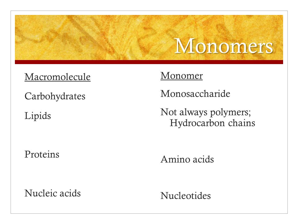 Monomers Macromolecule Carbohydrates Lipids Proteins Nucleic acids Monomer Monosaccharide Not always polymers; Hydrocarbon chains Amino acids Nucleoti