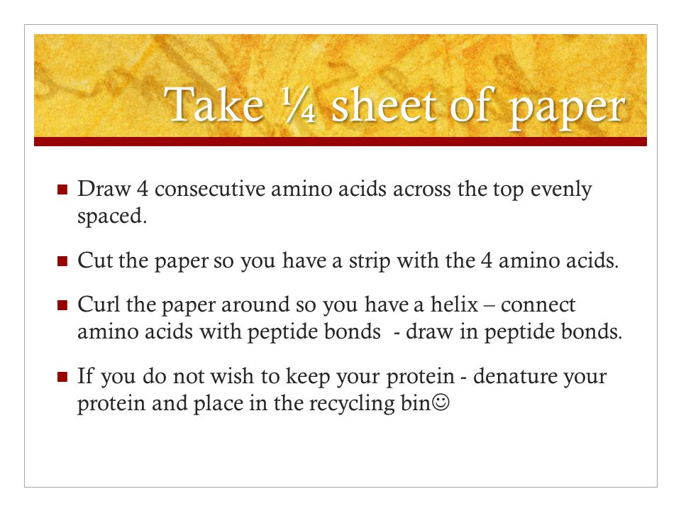 Take ¼ sheet of paper Draw 4 consecutive amino acids across the top evenly spaced. Cut the paper so you have a strip with the 4 amino acids. Curl the