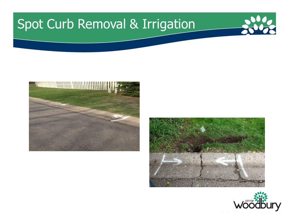 Spot Curb Removal & Irrigation
