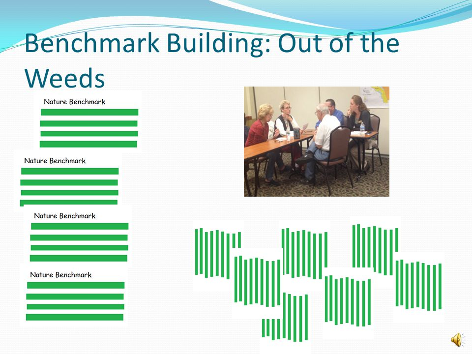 Start With Ideas for Indicators from Individuals Benchmark Building: From the Ground up Nature Economy Society Well Being
