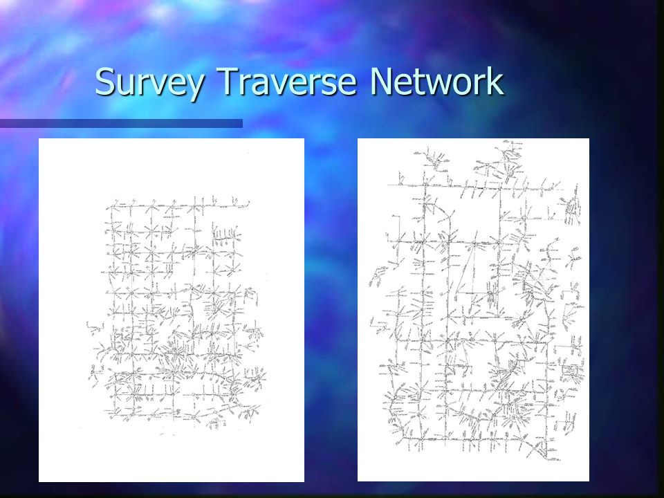 Survey Traverse Network