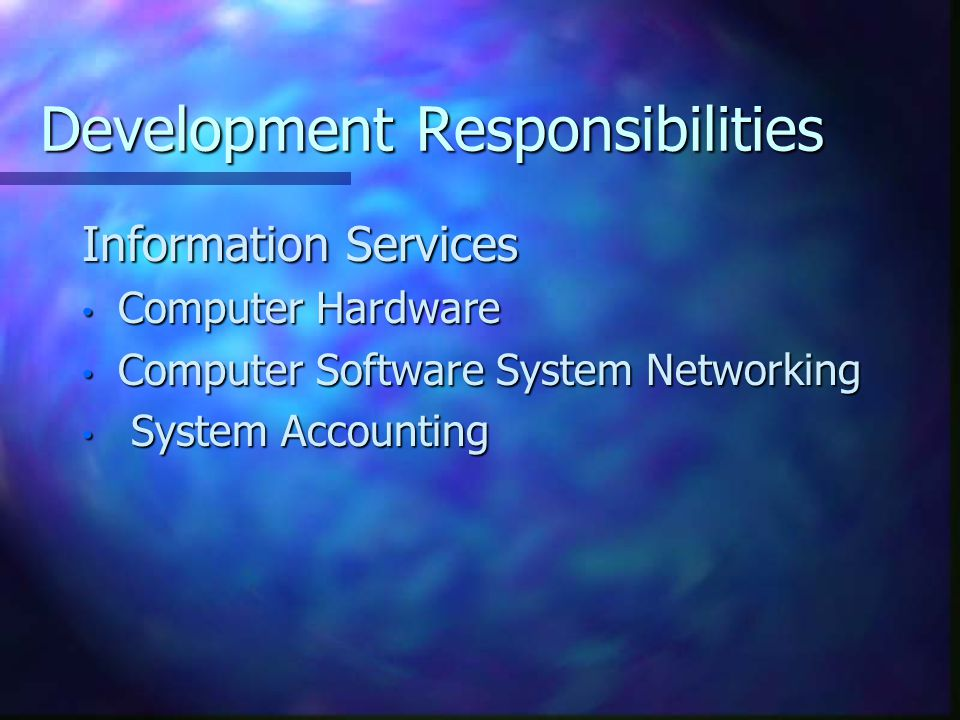 Development Responsibilities Information Services Computer Hardware Computer Hardware Computer Software System Networking Computer Software System Networking System Accounting System Accounting