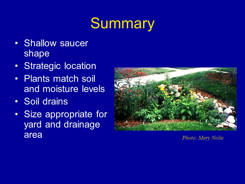 Summary Shallow saucer shape Strategic location Plants match soil and moisture levels Soil drains Size appropriate for yard and drainage area Photo: Mary Nolte