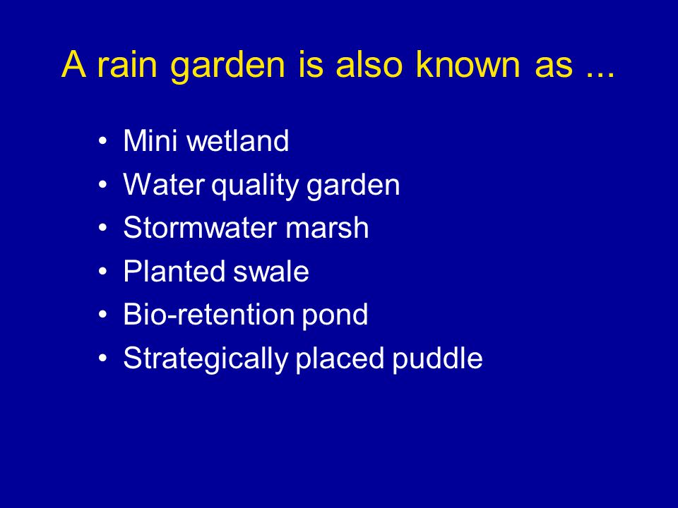 A rain garden is also known as...