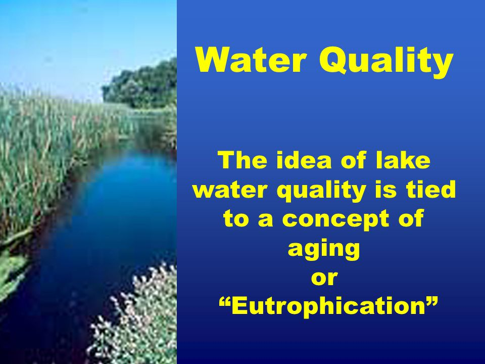 """Water Quality The idea of lake water quality is tied to a concept of aging or """"Eutrophication"""""""
