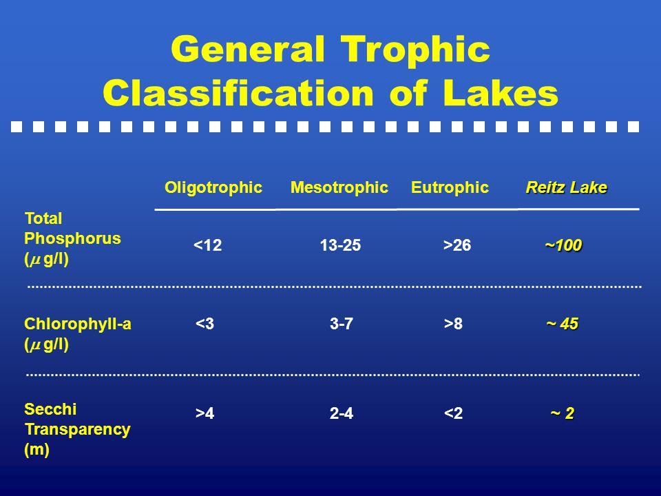 General Trophic Classification of Lakes Reitz Lake Oligotrophic Mesotrophic Eutrophic Reitz Lake Total Phosphorus (  g/l) Chlorophyll-a (  g/l) Se