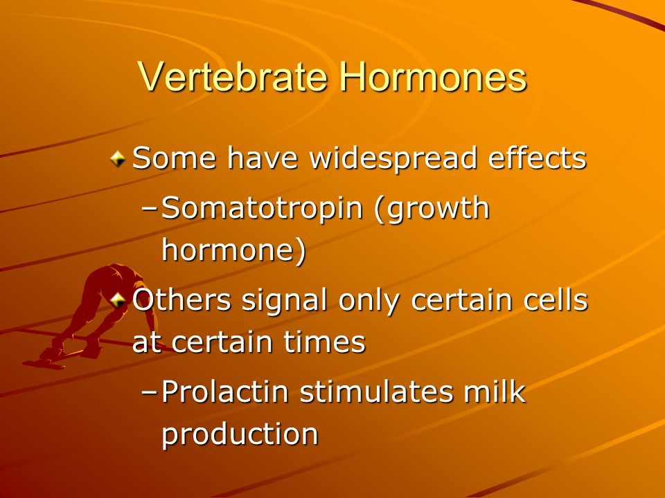 Vertebrate Hormones Some have widespread effects –Somatotropin (growth hormone) Others signal only certain cells at certain times –Prolactin stimulate