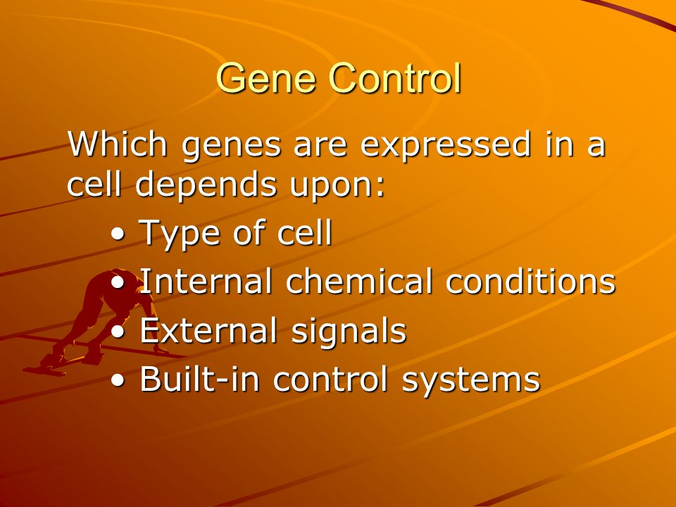 Gene Control Which genes are expressed in a cell depends upon: Type of cell Type of cell Internal chemical conditions Internal chemical conditions Ext
