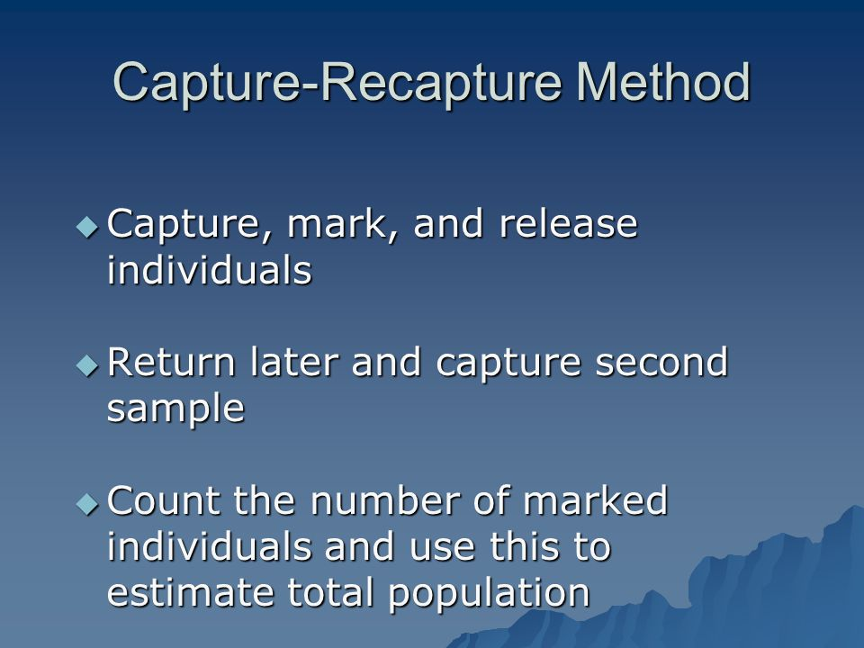Assumptions in Capture-Recapture Assumptions in Capture-Recapture  Marking has no effect on mortality  Marking has no effect on likelihood to being captured  There is no immigration or emigration between sampling times