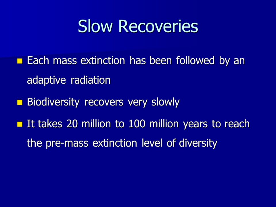Slow Recoveries Each mass extinction has been followed by an adaptive radiation Each mass extinction has been followed by an adaptive radiation Biodiversity recovers very slowly Biodiversity recovers very slowly It takes 20 million to 100 million years to reach the pre-mass extinction level of diversity It takes 20 million to 100 million years to reach the pre-mass extinction level of diversity