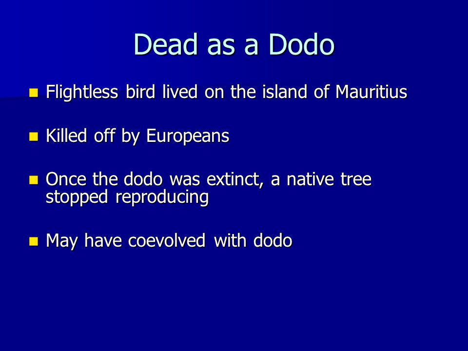 Dead as a Dodo Flightless bird lived on the island of Mauritius Flightless bird lived on the island of Mauritius Killed off by Europeans Killed off by Europeans Once the dodo was extinct, a native tree stopped reproducing Once the dodo was extinct, a native tree stopped reproducing May have coevolved with dodo May have coevolved with dodo