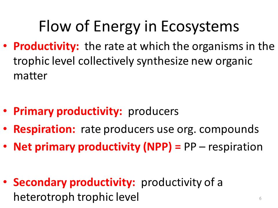 6 Productivity: the rate at which the organisms in the trophic level collectively synthesize new organic matter Primary productivity: producers Respir