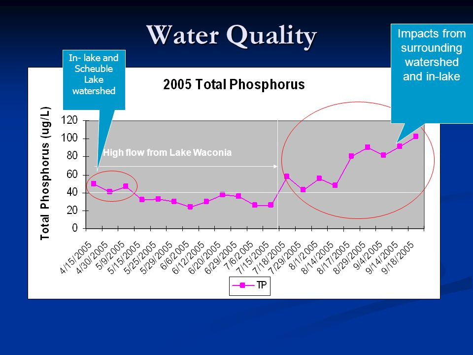 Water Quality High flow from Lake Waconia Impacts from surrounding watershed and in-lake In- lake and Scheuble Lake watershed