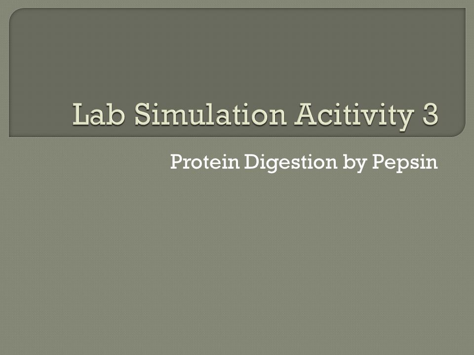 Protein Digestion by Pepsin