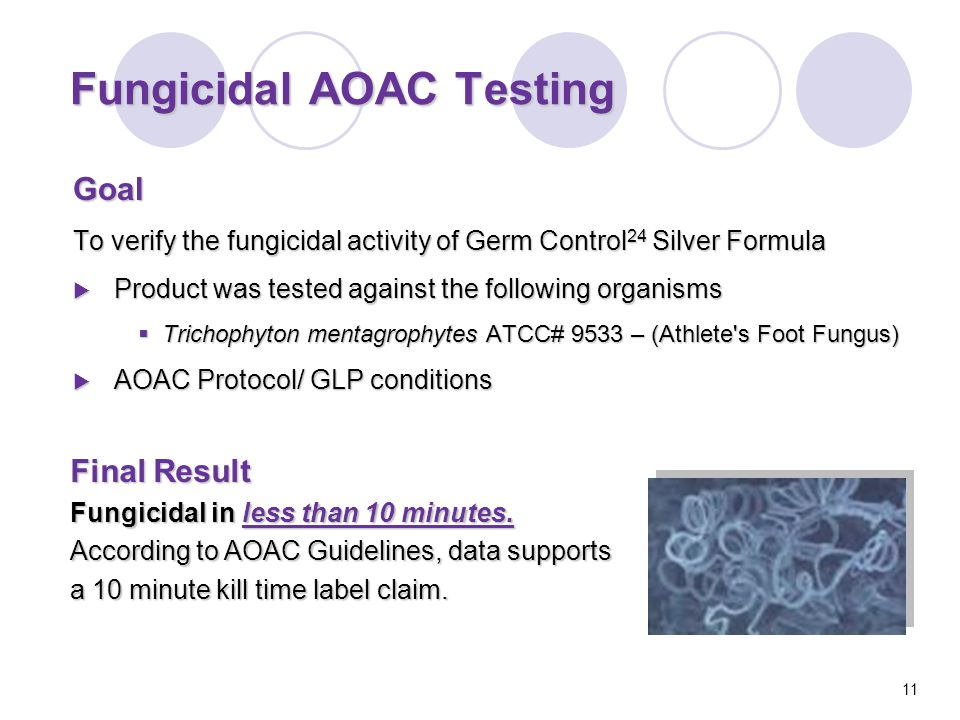 Goal To verify the fungicidal activity of Germ Control 24 Silver Formula  Product was tested against the following organisms  Trichophyton mentagrophytes ATCC# 9533 – (Athlete s Foot Fungus)  AOAC Protocol/ GLP conditions Fungicidal AOAC Testing Final Result Fungicidal in less than 10 minutes.