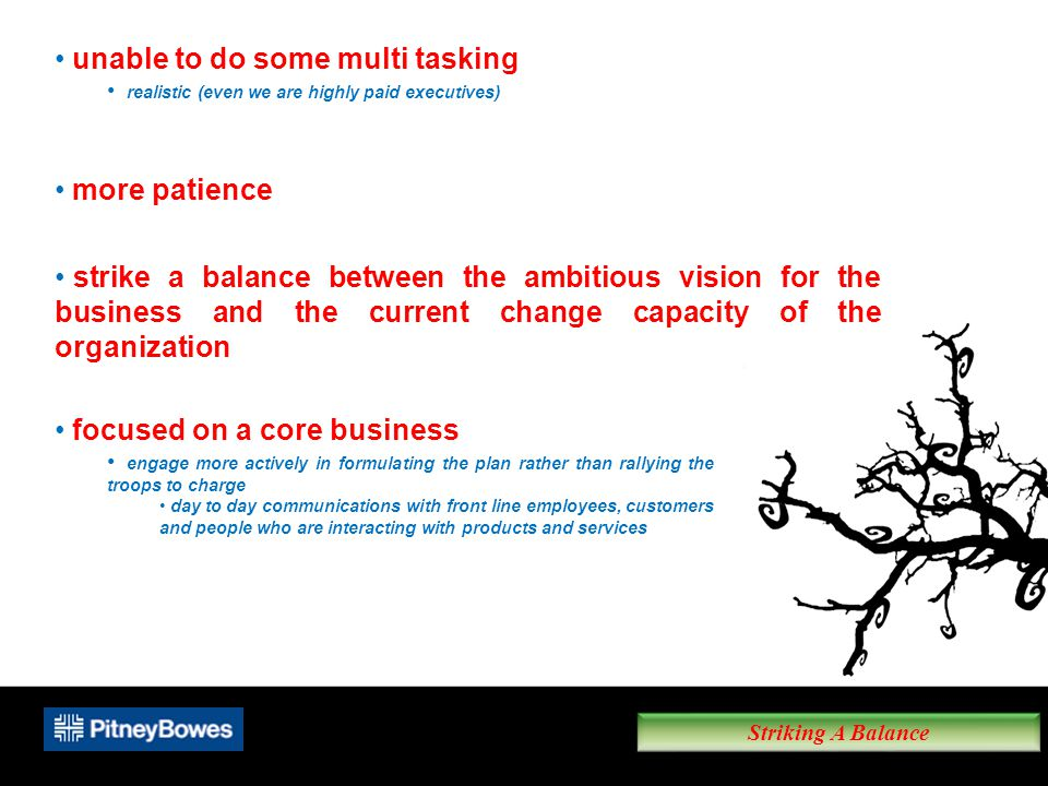 Striking A Balance unable to do some multi tasking realistic (even we are highly paid executives) more patience strike a balance between the ambitious vision for the business and the current change capacity of the organization focused on a core business engage more actively in formulating the plan rather than rallying the troops to charge day to day communications with front line employees, customers and people who are interacting with products and services