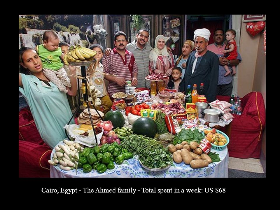 Cairo, Egypt - The Ahmed family - Total spent in a week: US $68
