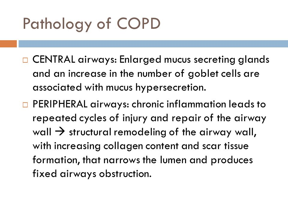 Pathology of COPD  CENTRAL airways: Enlarged mucus secreting glands and an increase in the number of goblet cells are associated with mucus hypersecretion.