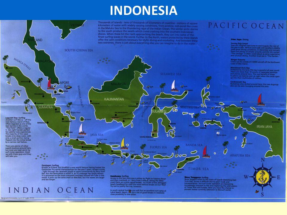 13 Center of Excellence West Indonesia HYPERBARIC CENTER Dr.MINTOHARDJO NAVAL HOSPITAL, JAKARTA East Indonesia INDONESIAN NAVAL HEALTH INSTITUTE (LAKESLA), SURABAYA