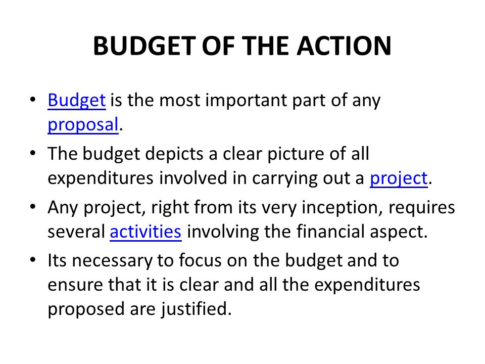 BUDGET OF THE ACTION Budget is the most important part of any proposal. Budget proposal The budget depicts a clear picture of all expenditures involve
