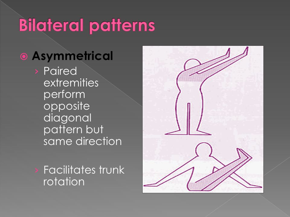  Asymmetrical › Paired extremities perform opposite diagonal pattern but same direction › Facilitates trunk rotation