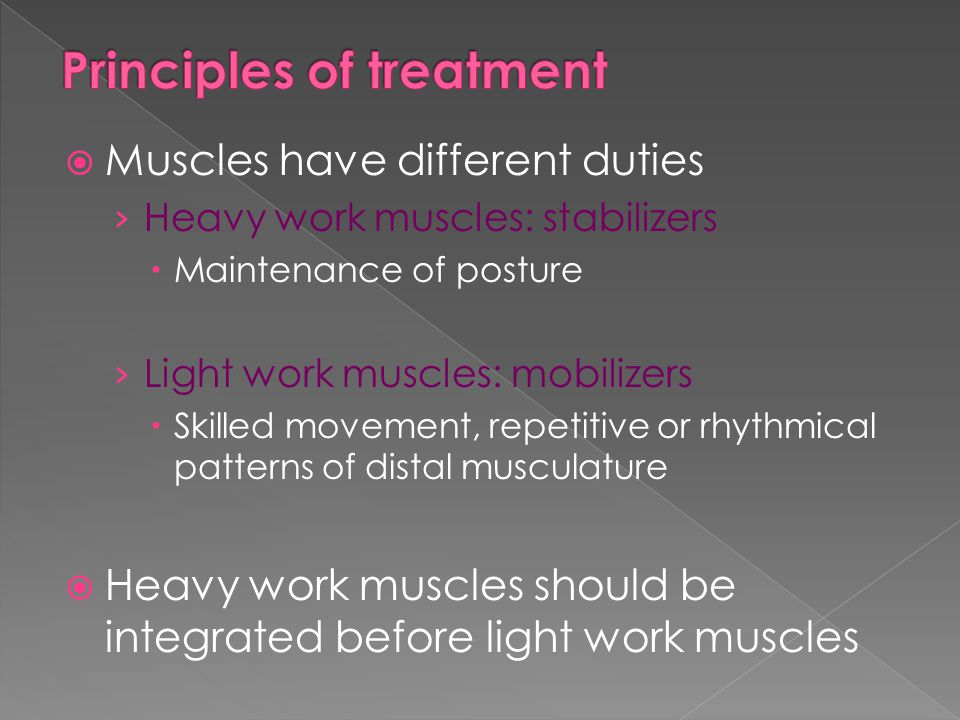  Muscles have different duties › Heavy work muscles: stabilizers  Maintenance of posture › Light work muscles: mobilizers  Skilled movement, repeti
