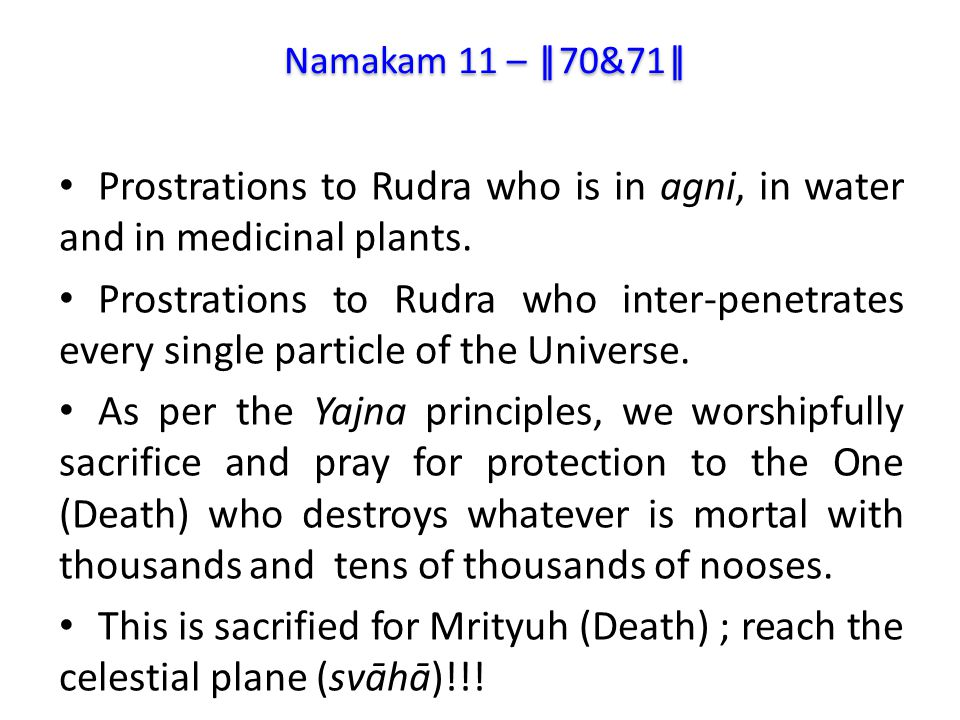 Prostrations to Rudra who is in agni, in water and in medicinal plants.