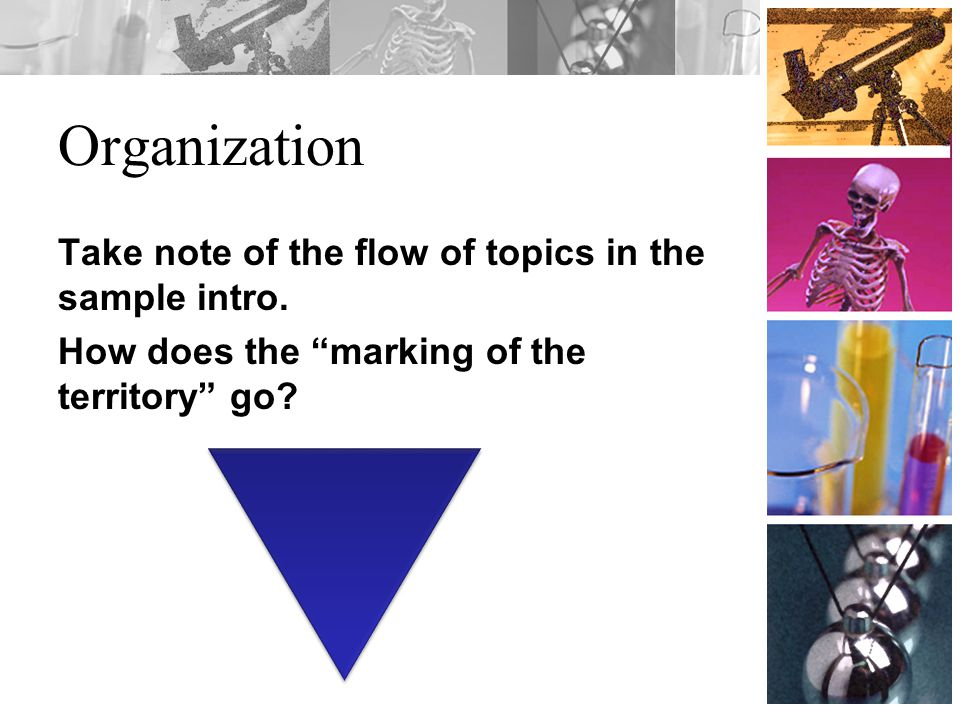Organization Take note of the flow of topics in the sample intro.