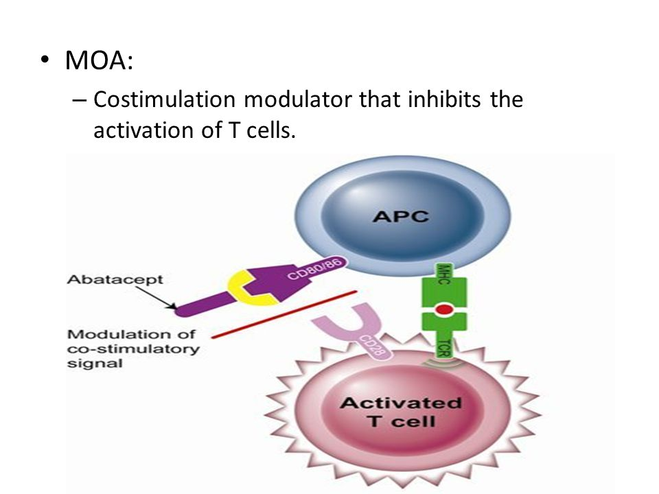 MOA: – Costimulation modulator that inhibits the activation of T cells.