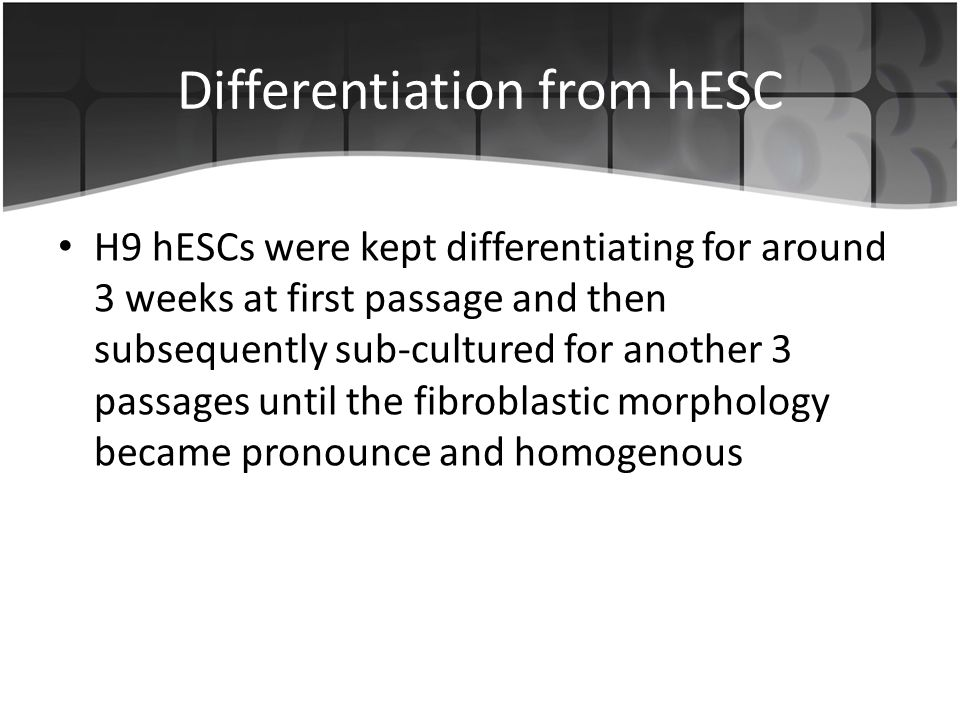 Differentiation from hESC H9 hESCs were kept differentiating for around 3 weeks at first passage and then subsequently sub-cultured for another 3 passages until the fibroblastic morphology became pronounce and homogenous