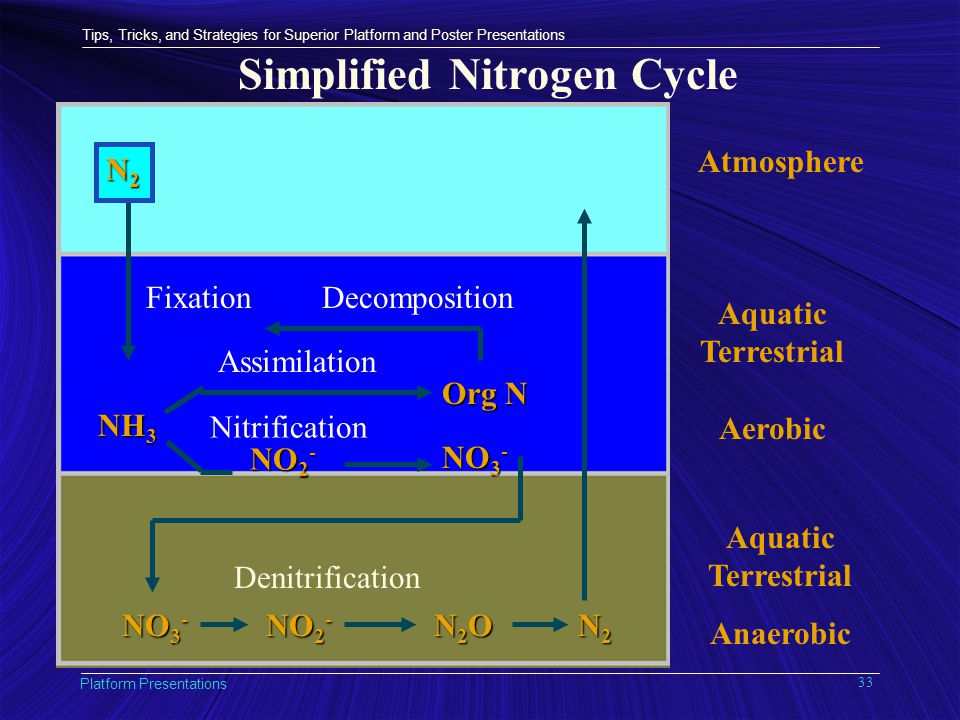 Tips, Tricks, and Strategies for Superior Platform and Poster Presentations Platform Presentations 33 Simplified Nitrogen Cycle Atmosphere Aquatic Terrestrial Aerobic Aquatic Terrestrial Anaerobic NH 3 NO 2 - NO 3 - Org N Fixation Assimilation Nitrification Decomposition NO 3 - NO 2 - N2ON2ON2ON2O N2N2N2N2 Denitrification N2N2N2N2