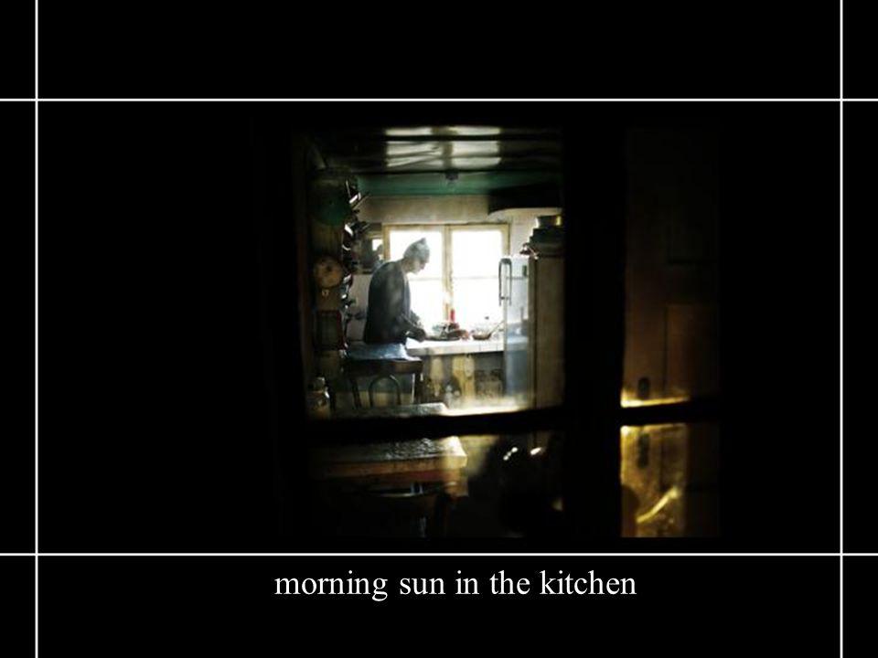 morning sun in the kitchen