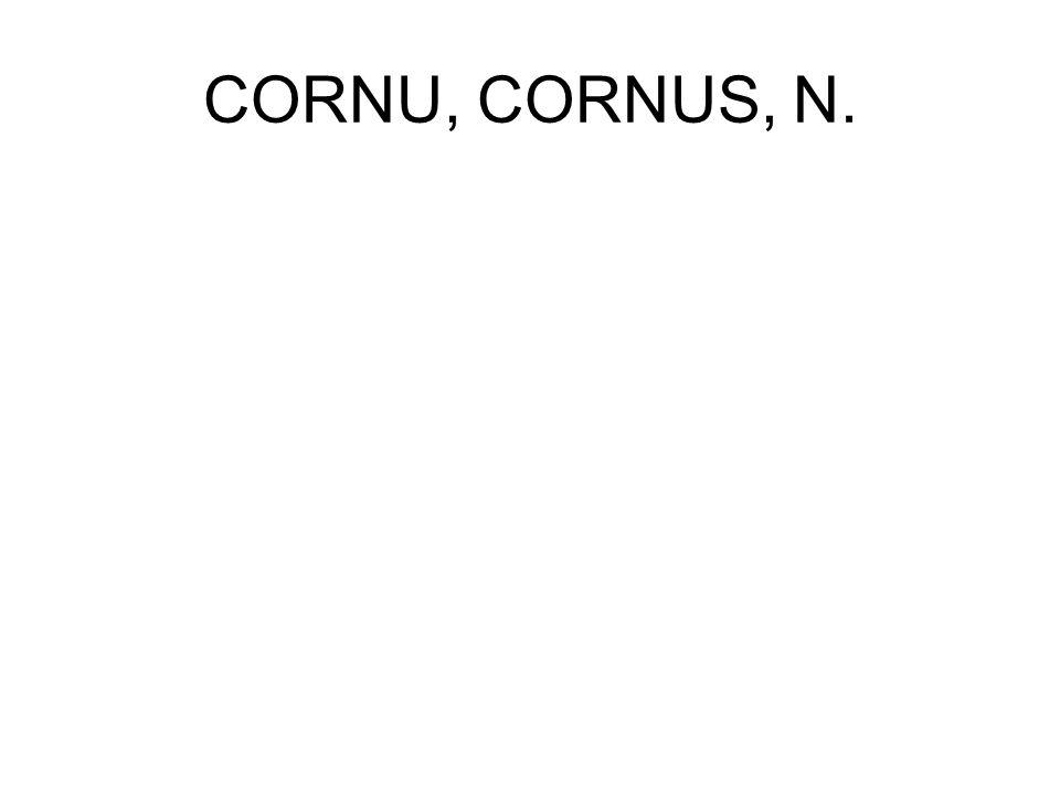CORNU, CORNUS, N.