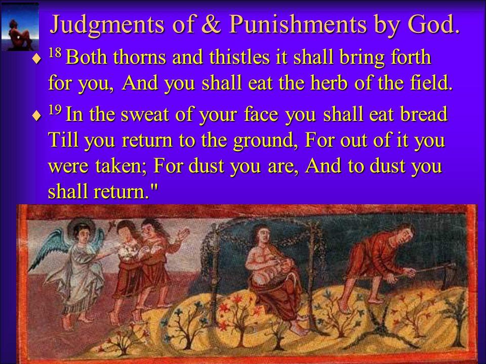 God's Judgments & Punishments.