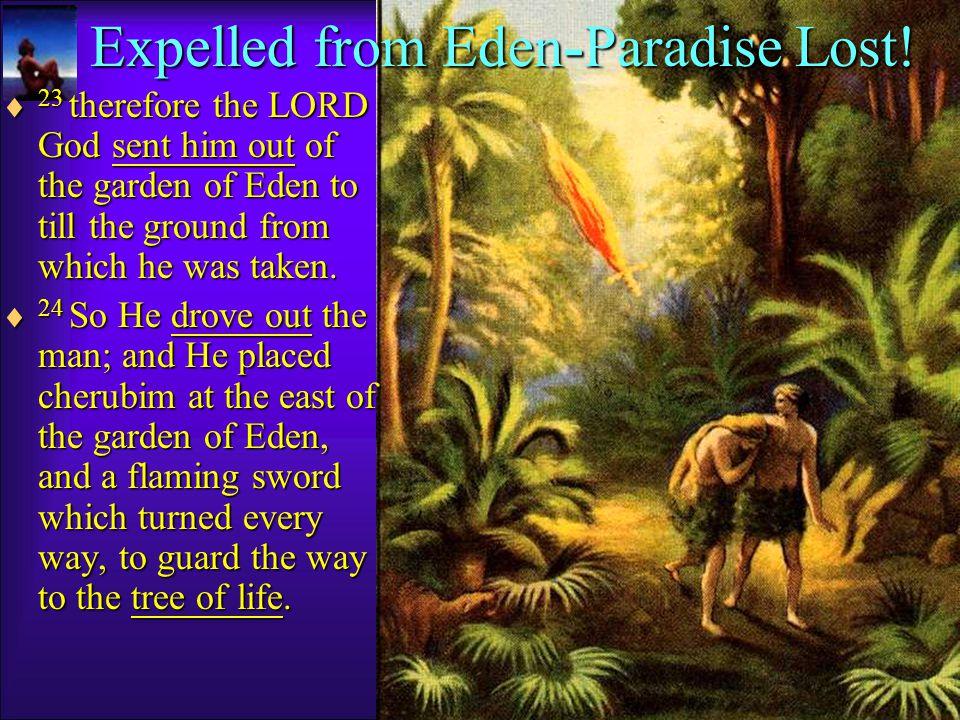 Man became like God knowing Evil.