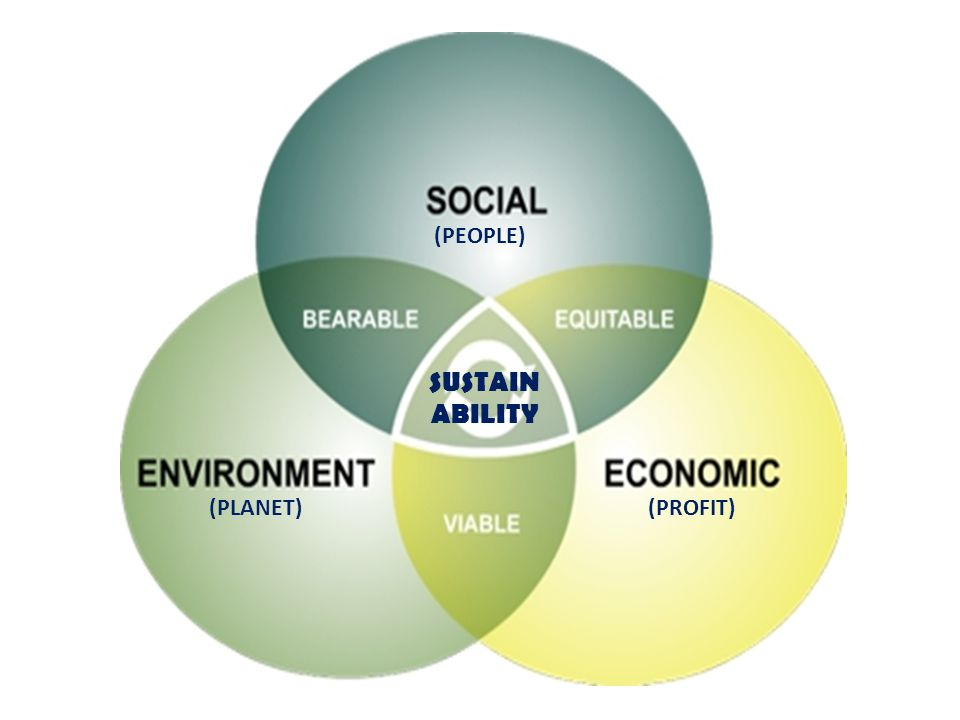 Implication of Sustainability Governments and companies have to consider the impacts on the three pillars of society, environment and economy, when they are making decisions and formulating policies.