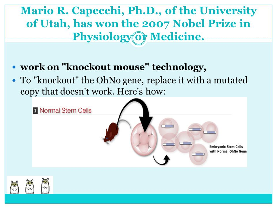 Mario R. Capecchi, Ph.D., of the University of Utah, has won the 2007 Nobel Prize in Physiology or Medicine. work on