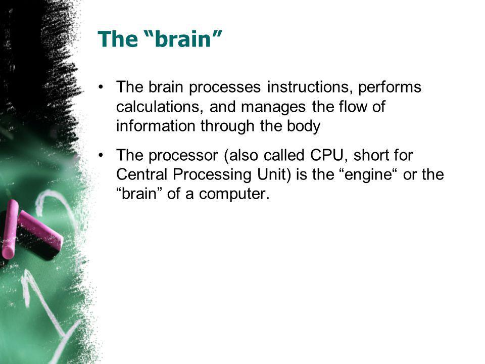 The brain The brain processes instructions, performs calculations, and manages the flow of information through the body The processor (also called CPU, short for Central Processing Unit) is the engine or the brain of a computer.